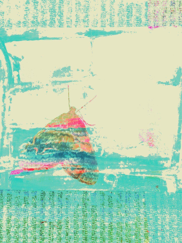 71471276-C645-4618-B4EA-FA8945D75D3D.jpeg