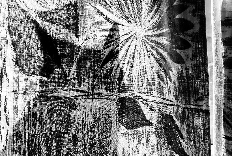butterfly_cabin_interior_900x600_final.jpg